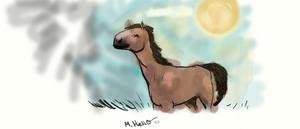 Horse drawing by EleveNax