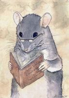 The Smart rat by Shizuku-Uzu
