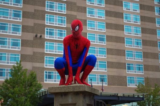 AACon 2014: Spiderman by Sylabus