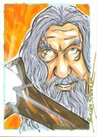Gandalf by gravyboy