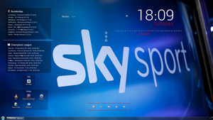 Rainmeter - SkyProfile by panmann