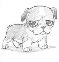 Cutsey Bulldog by tombancroft