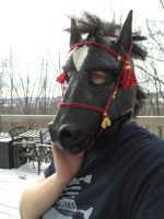 Neigh? Custom black Horse hood by user-name-not-found