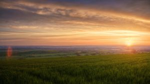 thuringian basin by Ditze