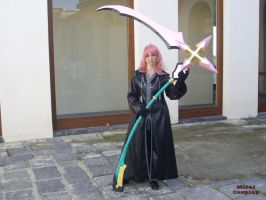MARLUXIA COSPLAY by MiraiCosplay