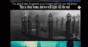 We will fight till the end by MarySeverus
