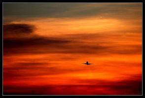Sunset with Plane by adamsik
