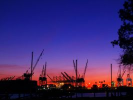 La Harbor Sunrise by Dracosilverwind