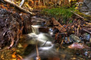 HDR Ditch 2 by Nebey