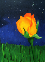 ACEO: June Night by Rhedrin