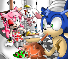 Sonamy The Hedgehog by team-sonicandsonica