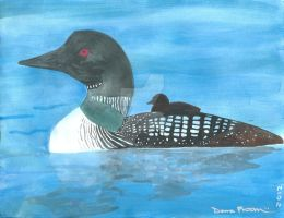 Bird 339 - State Birds: Common Loon by MasterKrypton