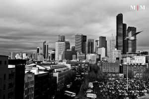 Seattle SkyLine Black White by binbin9