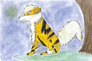 My Arcanine by DarkShinyCharizard
