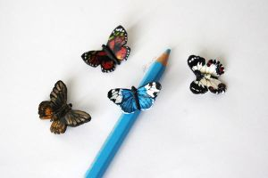 Bunch of miniature butterflies by Oviot