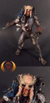 Elder Predator Custom by Unicron9