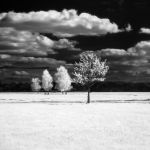 ir850 ii by ChristianRudat