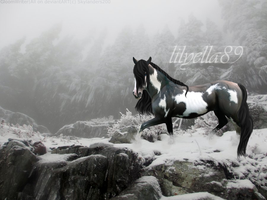 Order:::lilyella89:::Manip by makian-feathers
