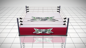 [MMD] Rumble Roses XX High Definition Ring - DL by MrWhitefolks