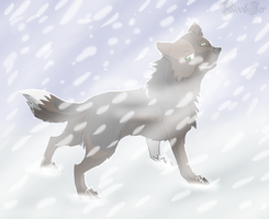 Winter by Bloodjer