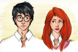harry and ginny by Mooknar