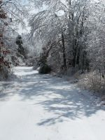 Winter Scape032 by effing-stock