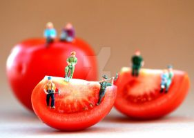 Tomato Land... by Fatima-AlKuwari