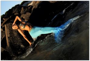 Mermaid on the rocks 1 by wildplaces