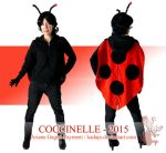 Coccinelle - Lady bug 2015 by Kadajo