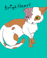 Brightheart by Bambiiie