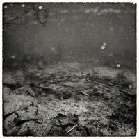 Beneath the Surface 03 by HorstSchmier