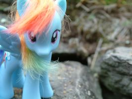 RAINBOW DASH :D by xXcandychrissyXx