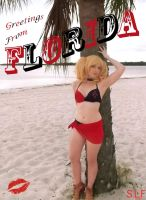 Harley's Holiday (to Florida) by batmannut