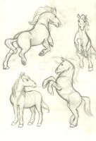 Horse Sketches by Frankyding90