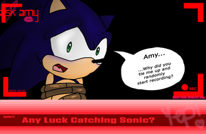 Ask Amy: Question 12: sonamyamy1 by icefatal