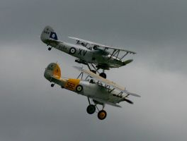 HIND AND NIMROD turn in by Sceptre63