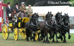 5 friesian carriage Full View by Amethyst--Dragon