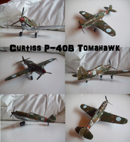 Curtiss P-40B Tomahawk by Teratophoneus