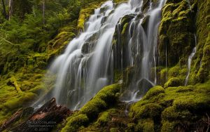 Waterfall - Upper Proxy Falls by La-Vita-a-Bella