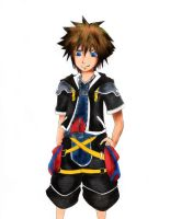 sora finished by girlngreen7