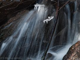 Waterfall detail by MartinGollery