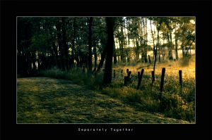 Separately Together by krush