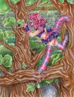 MSP 2014 Round 3 Example Cheshire Kitten by nickyflamingo