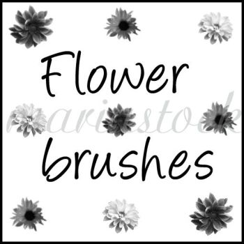 flower brushes by mariastock