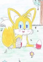 Cute Tails by NIGHTSandTAILSFAN