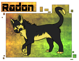 Radon Reference .:Commission:. by Baileeluz
