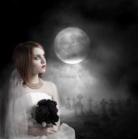 .:Damned Bride:. by andreiVV
