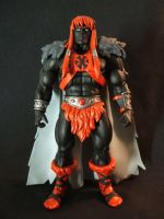 MOTUC custom Anti Grayskull by masterenglish