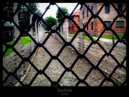 Auschwitz: trip into sadness 4 by lalas