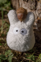 Totoro's Acorn by Animedemon001